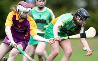 U.16A Shield Final Wexford v Offaly 24.04.16