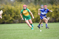 U.16 Shield Final Laois v Meath 24.04.16