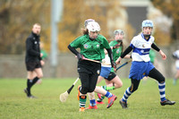 St Vincents v Lucan Sarsfields 27.11.16 Dublin Minor Camogie A Championship