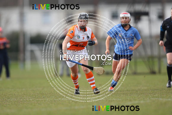 National Camogie League Div 3 Dublin v Armagh 28-02-16 (1)