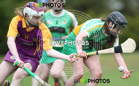 Leinster Camogie U-16A Shield Final Offaly v Wexford 24-04-16 (1)