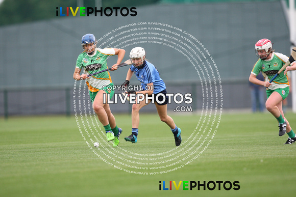 05-08-16 Leinster Camogie Minor Championship, Dublin v Offaly- Abbotstown (1)