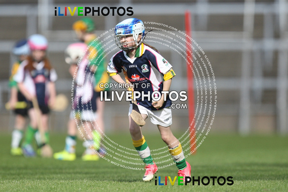 12-08-16 Half Time All Ireland Premier Junior Camogie CSF Killarney v Thomas Davis (2)