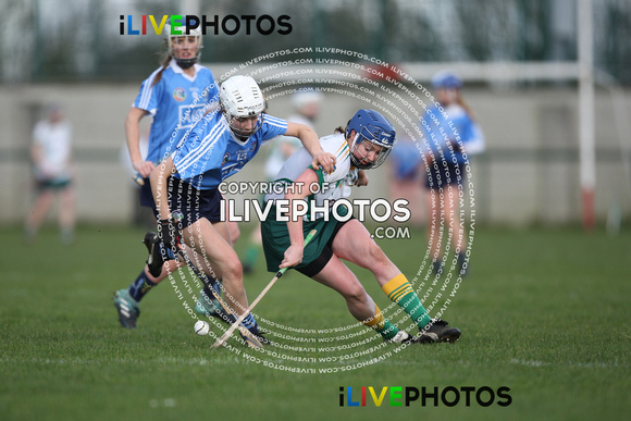 04-02-18 Senior 1 R3 Camogie NL Meath v Dublin at Trim GAA (1)