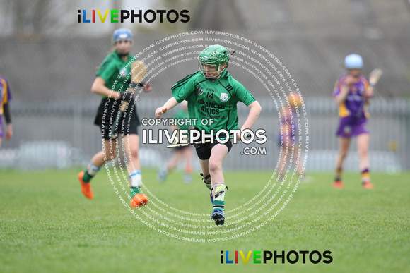 22-04-17 Lucan Sarsfields v Kilmacud Crokes Feile na nGael Div 1 Dublin Camogie qualifiers (1)
