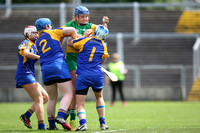 28-05-17 Leinster Camogie Junior Championship Final Offaly v Wicklow