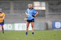 Dublin v Clare Div 1 National League at Parnell Pk 20.03.16