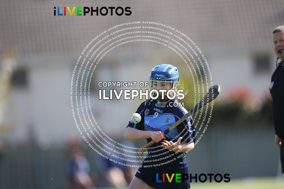 29-04-18 Div 4 Dublin Camogie Feile Final- Skerries harps v St Judes at Nh Peregrines (8)