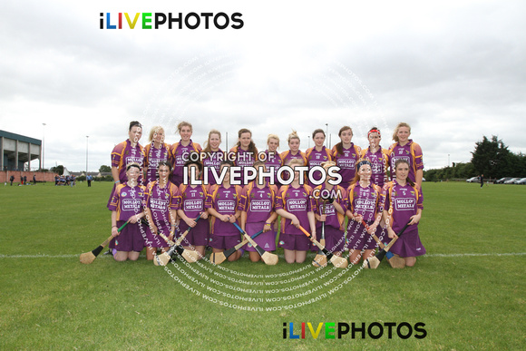 01-09-13 Leinster Camogie Minor -B- Championship Final Dublin v Wexford (1)