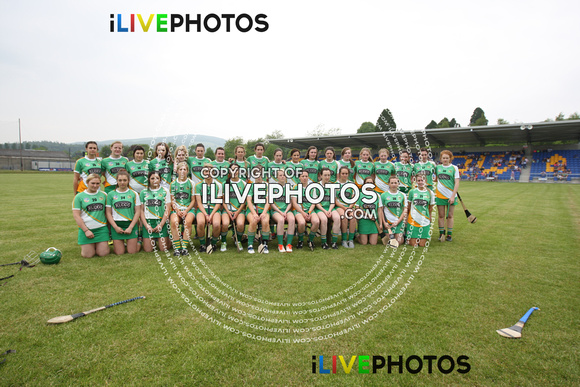 Leinster Camogie Senior Championship Final Wexford v Offaly 05-06-16 (1)