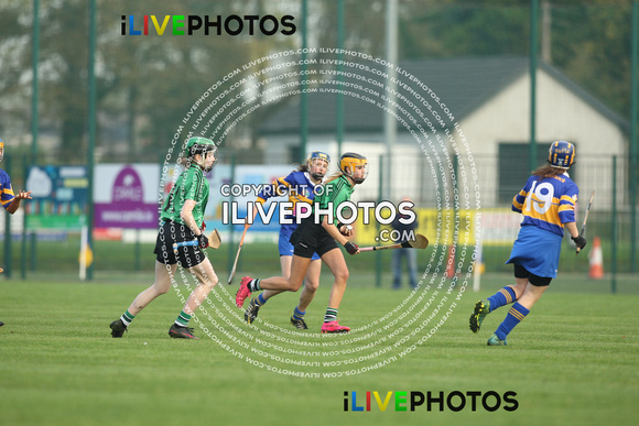 30-10-16 Dublin Minor A Camogie Championship-Castleknock v Lucan Sarsfields